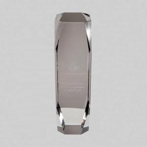 prachtige grote award graveren in 3D met eigen logo