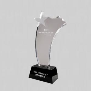 glazen ster award graveren | gratis giftbox