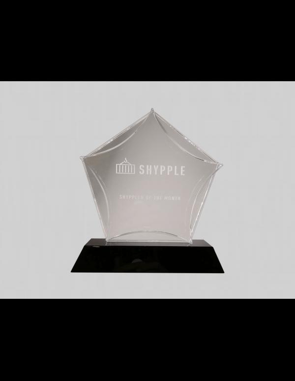 ster award bedrukken met eigen logo
