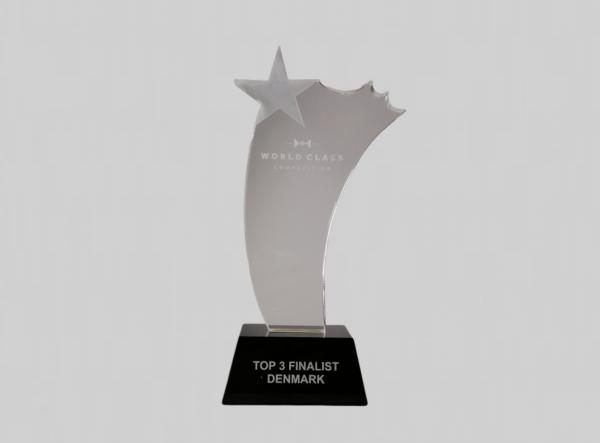 glazen ster award bestellen met gratis giftbox
